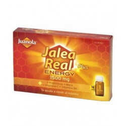 JUANOLA JALEA REAL PLUS ENERGY 14 VIALES